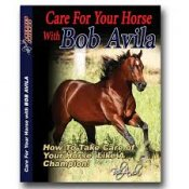 Bob Avila DVD Care for your Horse